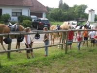 Lagerfeuer und Pferde 2013