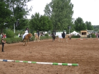 Quadrille 2009